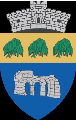 Primaria Chiajna